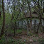 Zalissya Village